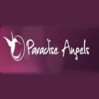 Paradise Angels, Sexclubs